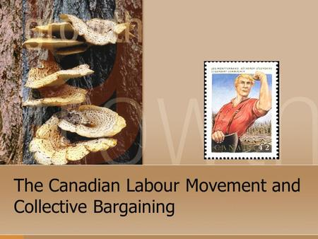 The Canadian Labour Movement and Collective Bargaining.
