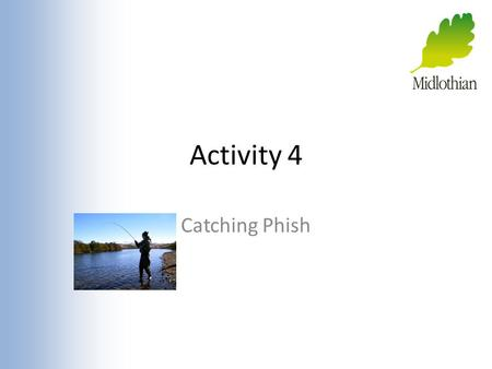 Activity 4 Catching Phish. Fishing If I went fishing what would I be doing? On the Internet fishing (phishing) is similar!