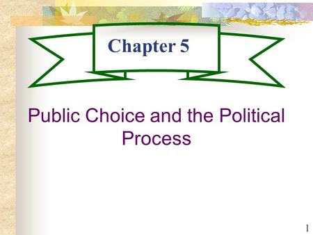 1 Chapter 5 Public Choice and the Political Process.