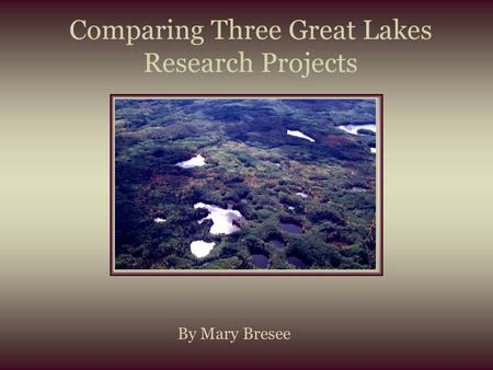 Comparing Three Great Lakes Research Projects By Mary Bresee.