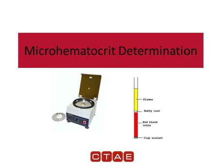 Microhematocrit Determination. Microhematocrit Hematocrit — Test that provides a health care worker with an estimate of the patient's red cell volume.