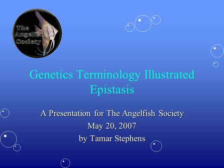 Genetics Terminology Illustrated Epistasis A Presentation for The Angelfish Society May 20, 2007 by Tamar Stephens.