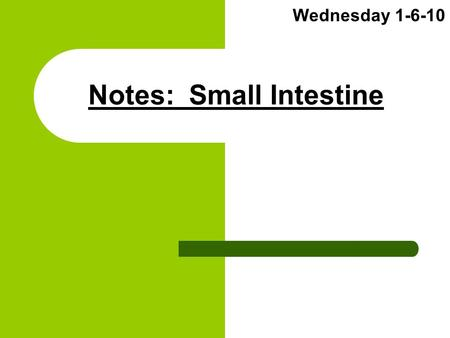 Notes: Small Intestine Wednesday 1-6-10. (1) Overall Function Absorb nutrients from stomach chyme Metabolize ALL Proteins and Lipids Leave only waste.