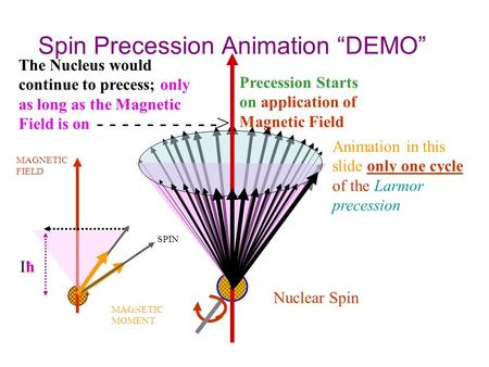 "Spin Precession Animation ""DEMO"" Precession Starts on application of Magnetic Field Nuclear Spin SPIN MAGNETIC MOMENT MAGNETIC FIELD μ X H IħIħ The Nucleus."