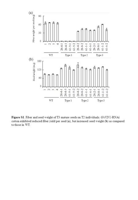 Figure S1. Fiber and seed weight of T3 mature seeds on T2 individuals. GhVIN1-RNAi cotton exhibited reduced fiber yield per seed (a), but increased seed.