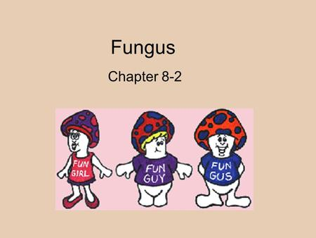 Fungus Chapter 8-2. Fungi All are eukaryotic just like protists Multicellular (only one exception -yeast)