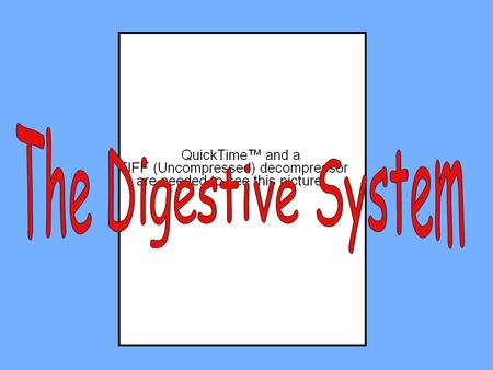 I.DIGESTION is the MECHANICAL(changes size of food) and CHEMICAL(changes chemical composition) breakdown of food. II. Processes of the digestive system: