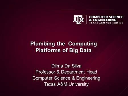 Plumbing the Computing Platforms of Big Data Dilma Da Silva Professor & Department Head Computer Science & Engineering Texas A&M University.