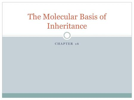 CHAPTER 16 The Molecular Basis of Inheritance. What is DNA? DNA stands for deoxyribonucleic acid. DNA is what makes our genes, and along with protein,
