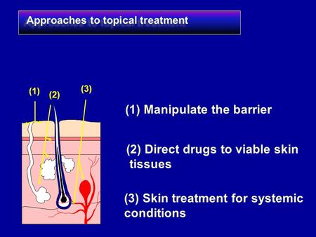 Approaches to topical treatment (1) (1) Manipulate the barrier (2) (2) Direct drugs to viable skin tissues (3) (3) Skin treatment for systemic conditions.
