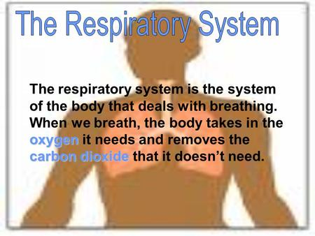 Oxygen carbon dioxide The respiratory system is the system of the body that deals with breathing. When we breath, the body takes in the oxygen it needs.