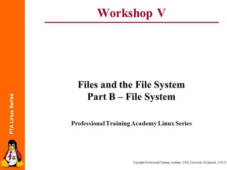 PTA Linux Series Copyright Professional Training Academy, CSIS, University of Limerick, 2006 © Workshop V Files and the File System Part B – File System.