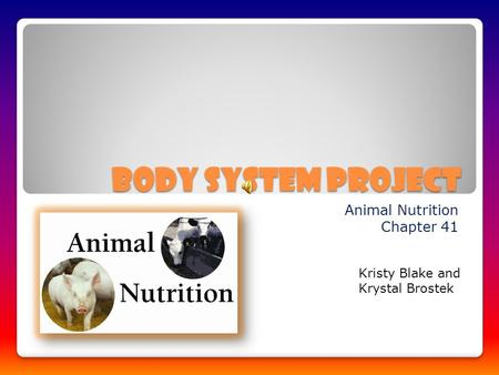 Body System Project Animal Nutrition Chapter 41 Kristy Blake and Krystal Brostek.