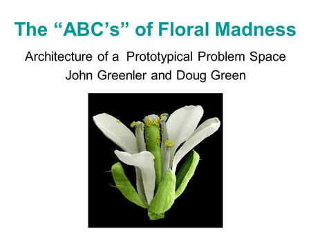 "The ""ABC's"" of Floral Madness Architecture of a Prototypical Problem Space John Greenler and Doug Green."