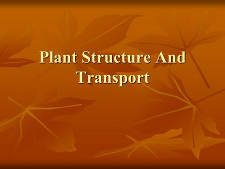 Plant Structure And Transport. Chapter 13: Plant Structure And Transport Main Parts Of Plant: Main Parts Of Plant: 1.Roots 1.Roots 2.Stem 2.Stem 3.Leaves.
