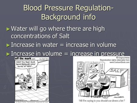 Blood Pressure Regulation- Background info ► Water will go where there are high concentrations of Salt ► Increase in water = increase in volume ► Increase.