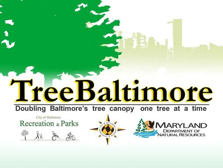 Doubling Baltimore's tree canopy one tree at a time.