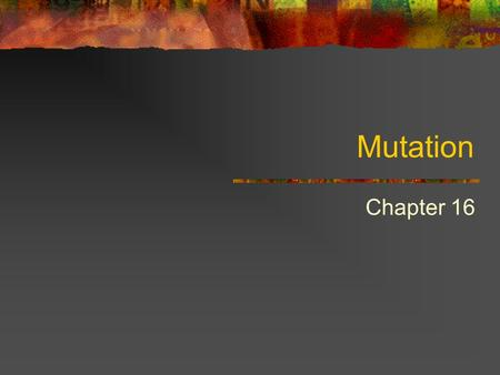 Mutation Chapter 16. Mutation A change in structure or amount of genetic material If phenotype is altered – affected organism is called a mutant Mutation.