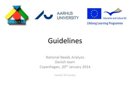 Guidelines National Needs Analysis Danish team Copenhagen, 20 th January 2014 (revised: 20 th January)