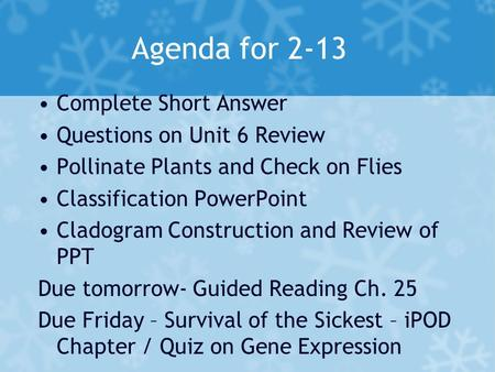 Agenda for 2-13 Complete Short Answer Questions on Unit 6 Review Pollinate Plants and Check on Flies Classification PowerPoint Cladogram Construction and.