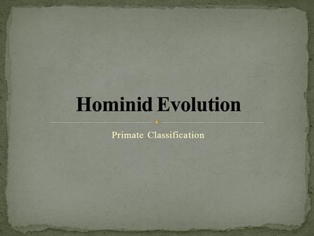 Primate Classification. ~25 million years ago: Old World Monkeys split from Hominoids, a linage that resulted in humans, gorillas and chimps ~17 million.