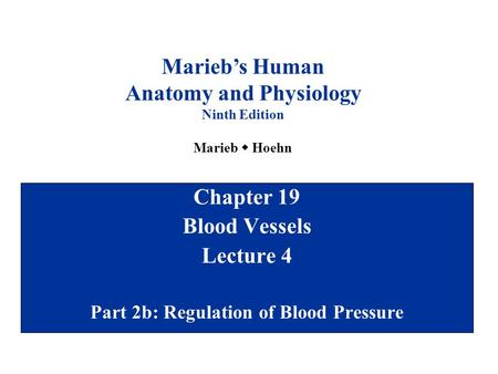Chapter 19 Blood Vessels Lecture 4 Part 2b: Regulation of Blood Pressure Marieb's Human Anatomy and Physiology Ninth Edition Marieb  Hoehn.