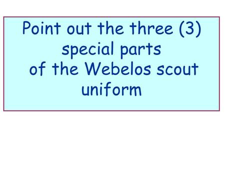 Point out the three (3) special parts of the Webelos scout uniform.