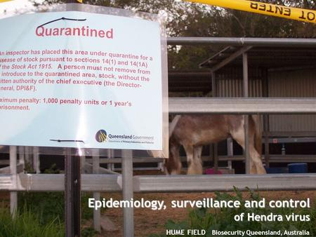 © The State of Queensland, Department of Employment, Economic Development and Innovation, 2009 HUME FIELD Biosecurity Queensland, Australia Epidemiology,
