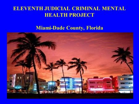 ELEVENTH JUDICIAL CRIMINAL MENTAL HEALTH PROJECT Miami-Dade County, Florida.