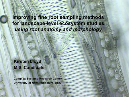 Improving fine root sampling methods for landscape-level ecosystem studies using root anatomy and morphology Kirsten Lloyd M.S. Candidate Complex Systems.