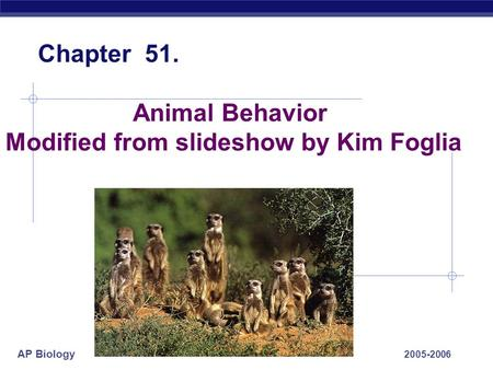 AP Biology 2005-2006 Animal Behavior Modified from slideshow by Kim Foglia Chapter 51.