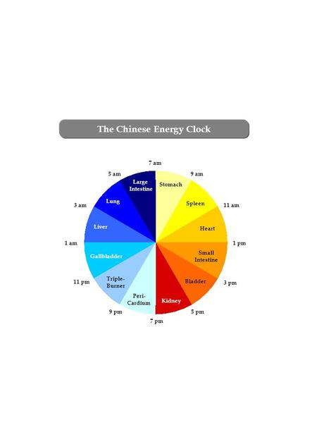 The Chinese Energy Clock 7 am 9 am 11 am 1 pm 3 pm 5 pm Stomach 9 pm 11 pm 1 am 3 am 5 am Spleen Heart Small Intestine Bladder Kidney Peri- Cardium Triple-