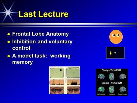 Last Lecture Frontal Lobe Anatomy Inhibition and voluntary control