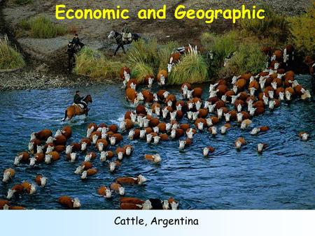 Cattle, Argentina Economic and Geographic Suburbs of Copenhagen, Denmark Geographic and Social.
