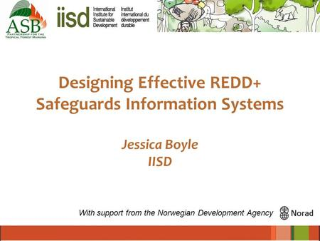 Designing Effective REDD+ Safeguards Information Systems Jessica Boyle IISD With support from the Norwegian Development Agency.