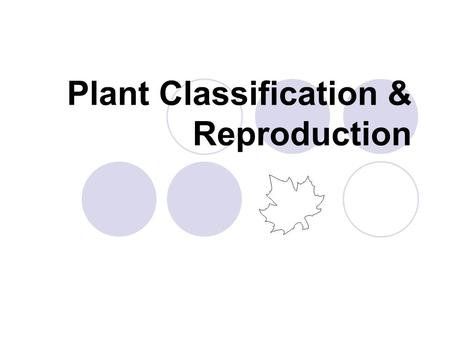 Plant Classification & Reproduction. Plants can be classified into 2 main groups: Non-seed plants  mosses = no vascular systems  ferns = vascular systems.