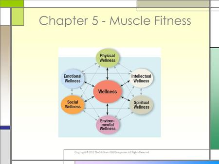 Copyright © 2012 The McGraw-Hill Companies. All Rights Reserved. Chapter 5 - Muscle Fitness.