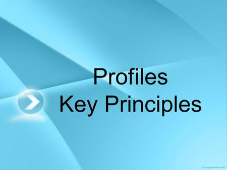 Profiles Key Principles. What is a profile? A profile is a snapshot of a child or young person's best achievements at a given point in time. It is one.