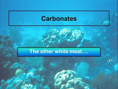 Carbonates The other white meat….. Processes that affect compositionally controlled marine facies 1.Influx of terrigenous sediment 2.Rate of organic productivity.