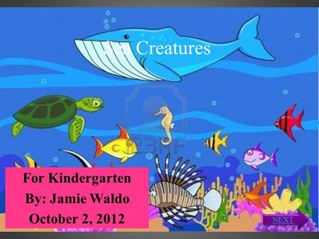 Sea Creatures For Kindergarten By: Jamie Waldo October 2, 2012 NEXT.