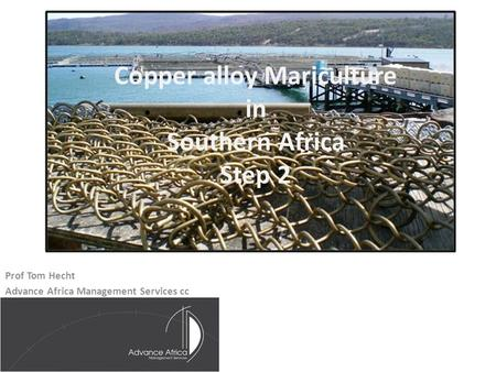 Copper alloy Mariculture in Southern Africa Step 2 Prof Tom Hecht Advance Africa Management Services cc.