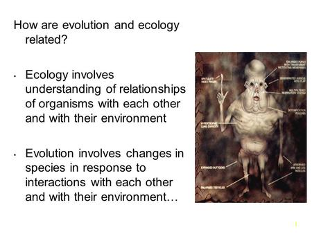 1 How are evolution and ecology related? Ecology involves understanding of relationships of organisms with each other and with their environment Evolution.