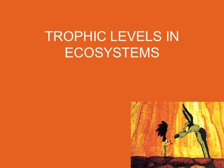 TROPHIC LEVELS IN ECOSYSTEMS. Capturing and Releasing Energy Everything that you do requires energy! Most of the energy you use came primarily from THE.