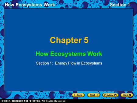 How Ecosystems WorkSection 1 Chapter 5 How Ecosystems Work Section 1: Energy Flow in Ecosystems.