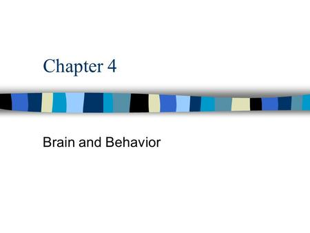 Chapter 4 Brain and Behavior. n Adaptive behavior is accomplished through the action of adapted brains n The case of Phineas Gage –Damage to area at the.
