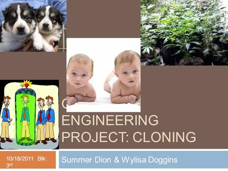 GENETIC ENGINEERING PROJECT: CLONING Summer Dion & Wylisa Doggins 10/18/2011 Blk: 3 rd.