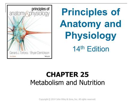 CHAPTER 25 Metabolism and Nutrition Principles of Anatomy and Physiology 14 th Edition Copyright © 2014 John Wiley & Sons, Inc. All rights reserved.