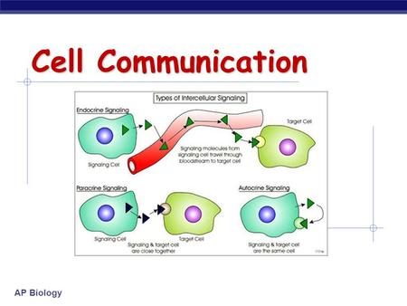 AP Biology Cell Communication. AP Biology Communication Methods  Cell-to-cell contact  Local signaling  Long distance signaling.