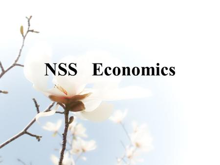 NSS Economics. Economics aims at: - developing students' interest in exploring human behaviour and social issues through an economic perspective - enhance.