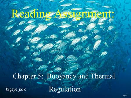 Chapter 5: Buoyancy and Thermal
